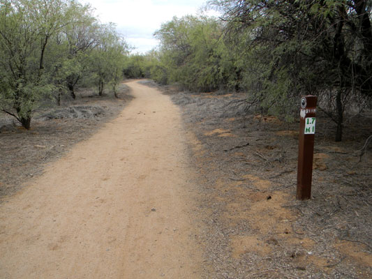 Walking trail through Reach 11 Park, Phoenix, Arizona